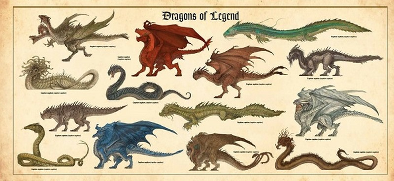 The council of wyrm pdf