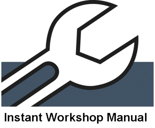 pdf vy commodore workshop manual free download