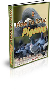 The complete guide to raising pet birds for profit pdf